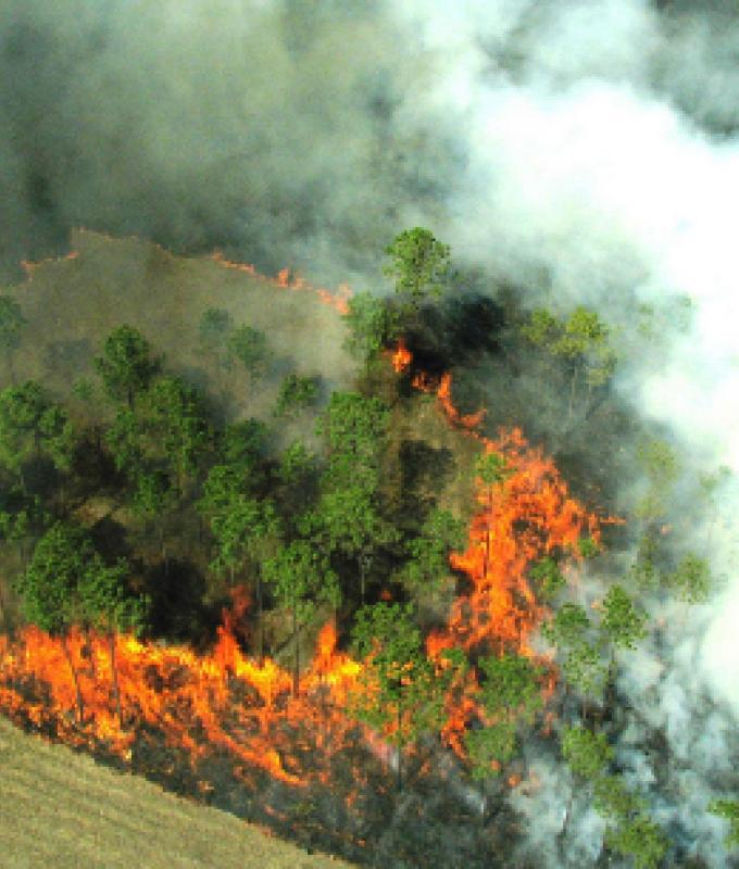 Prorogata la fase di grave pericolosità degli incendi boschivi